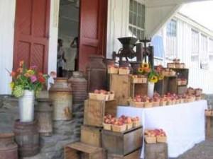 Scott Farm Heirloom Apples