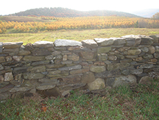 Rebuilt historic dry stone field wall