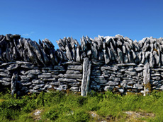 Another Irish Family dry stone Wall