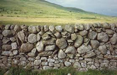 Typical Scottish Galloway dry stone Wall (photo credit: historic-scotland.gov.uk)