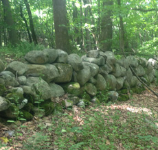 Historic NH Galloway wall in need of rebuilding