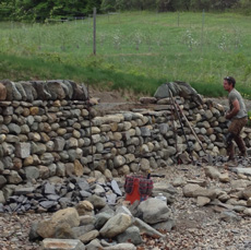 Dry stone retaining wall in progress