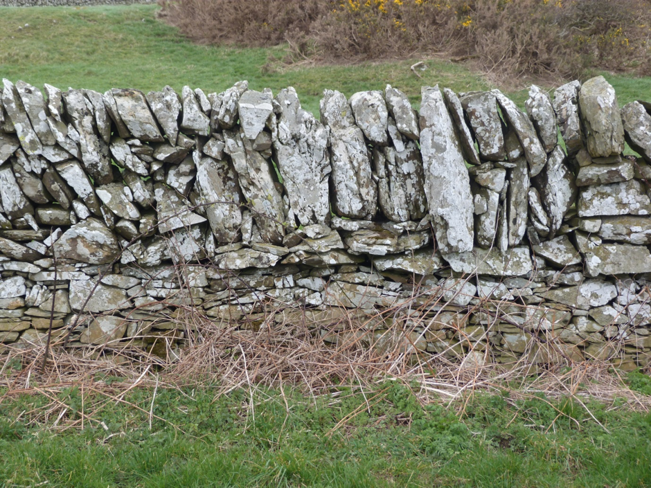 Galloway dry stone wall built with flat and angular stone