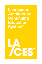 laces-vertical-yellow