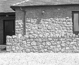 stonechat-15-1.jpg