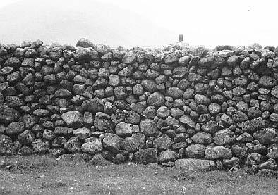 stonechat-15-11.jpg