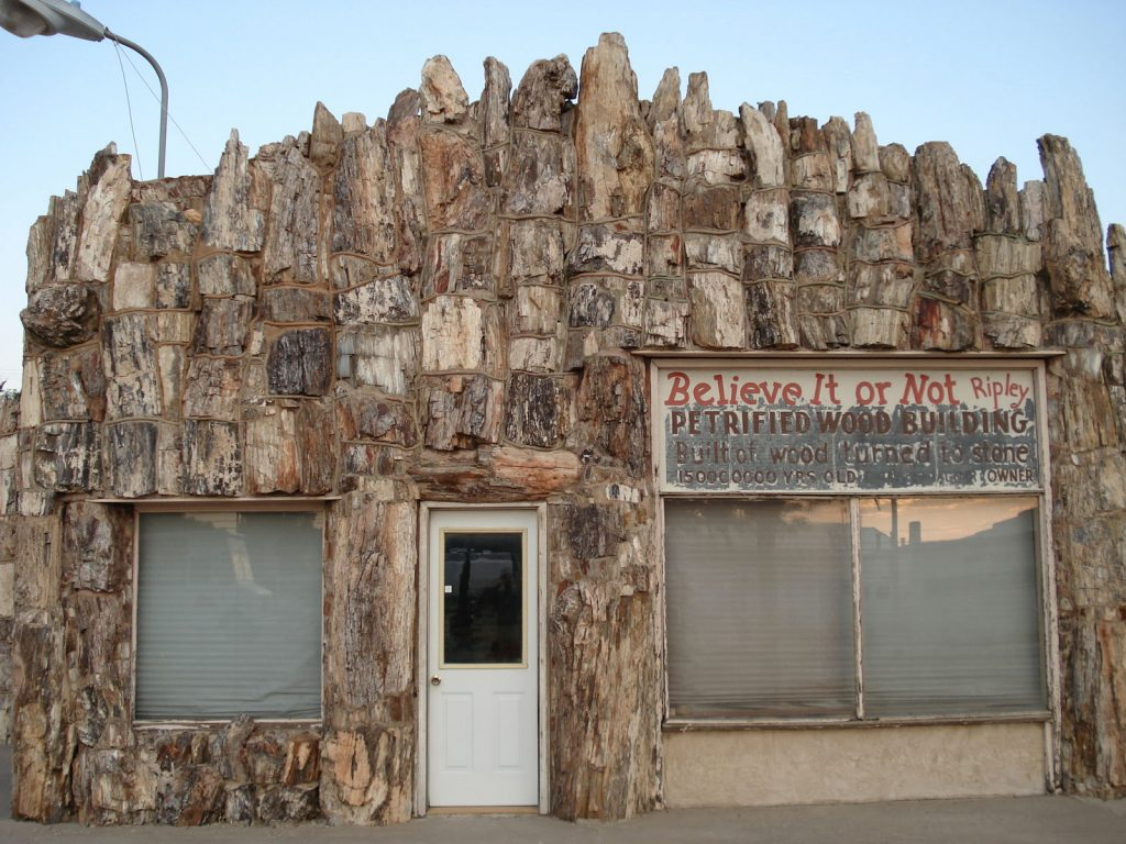 Gas Station built with Petrified Wood from Stories In Stone, page 137