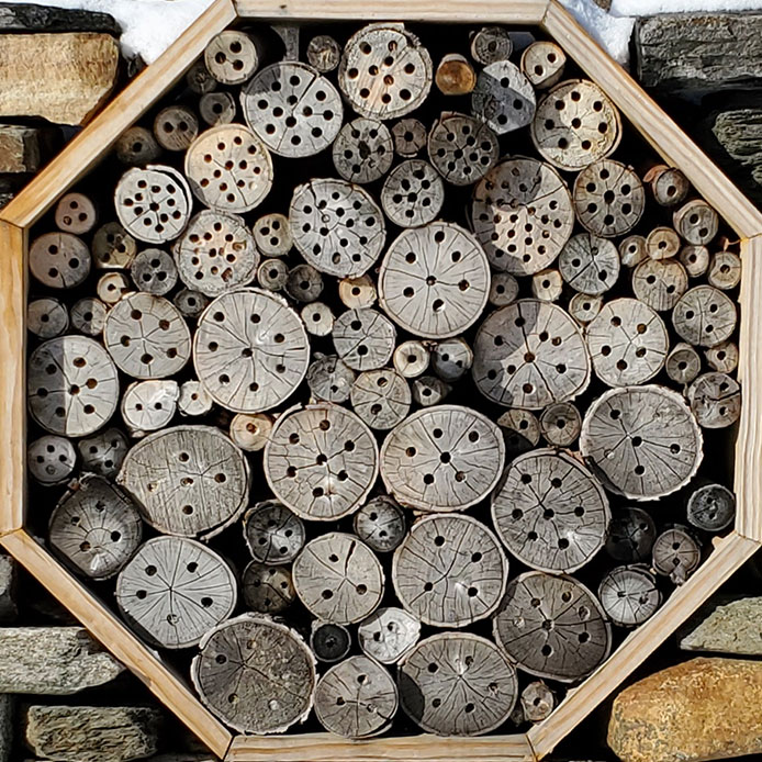 Close up of a bee hotel built by Jared Flynn