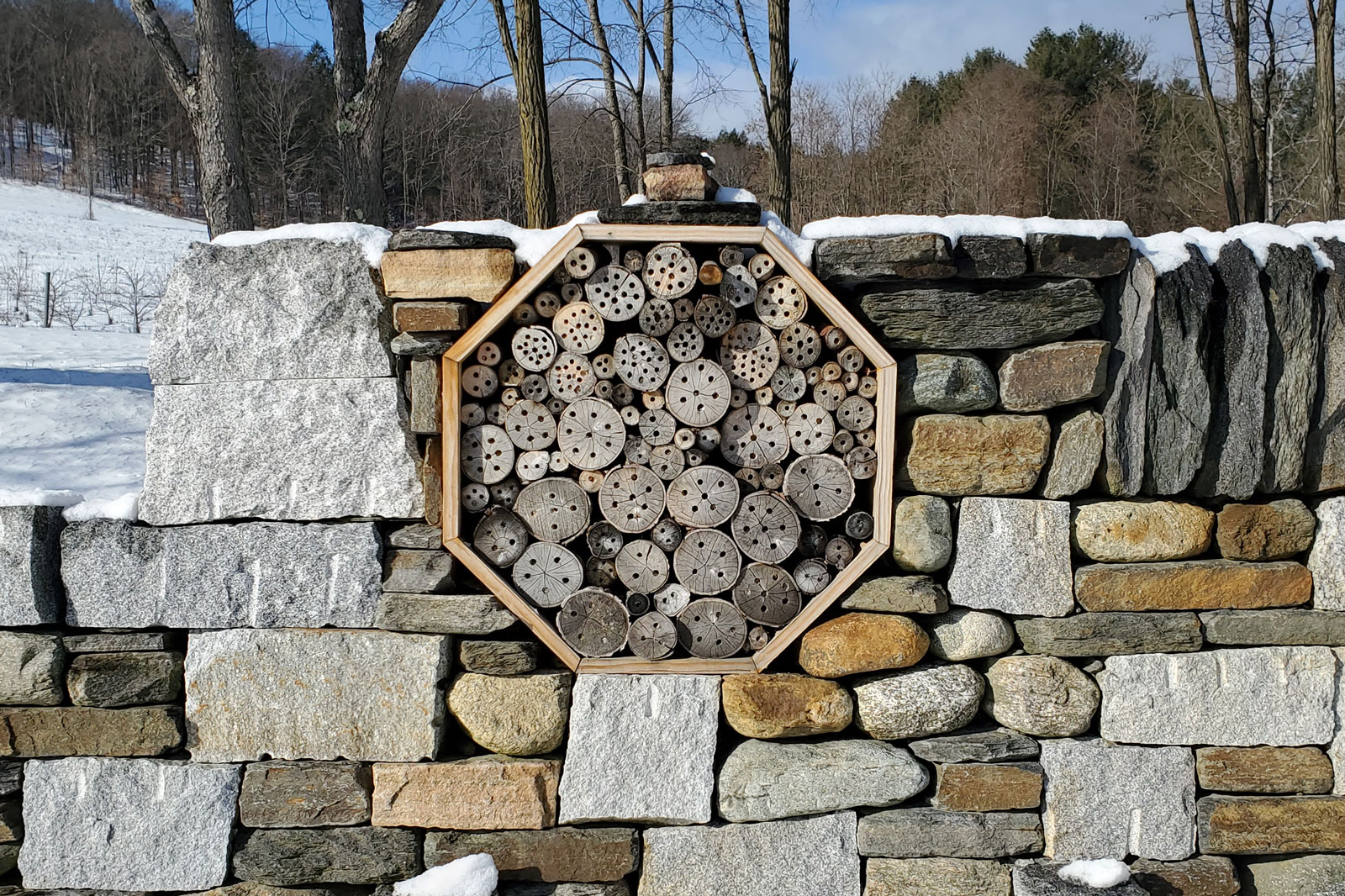 Bee Hotel Built By Jared Flynn