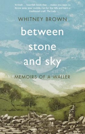 Between Stone and Sky by Whitney Brown