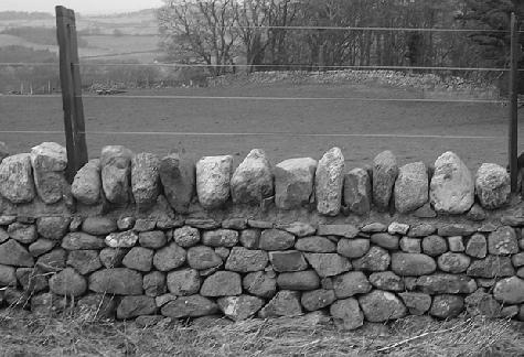 Figure 2, Wall in Bethesda, Gwynedd, Wall Face View