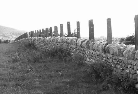 Figure 2, Wall in Bethesda, Gwynedd